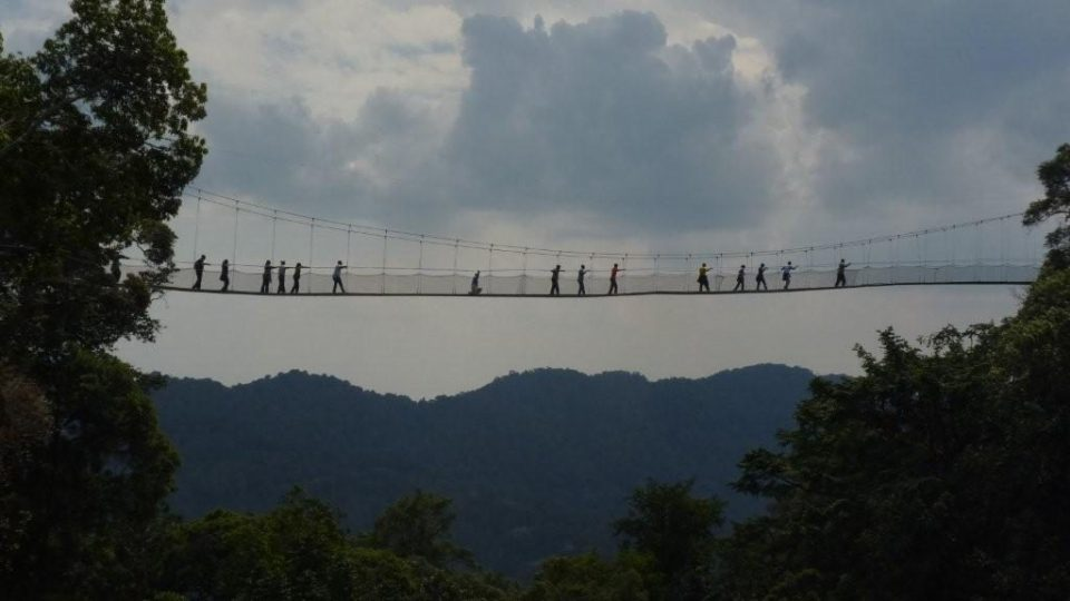 Tourists in Nyungwe National Park's canopy walkway in South West of Rwanda
