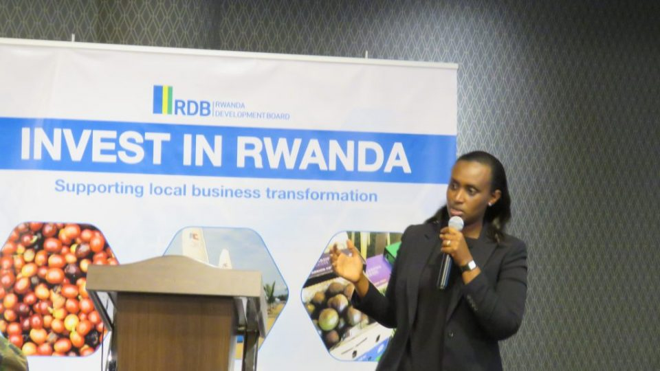 RDB's Head of Investment Promotion Winifred Ngangure presents some of the investment opportunities in Nyagatare District (00000002)
